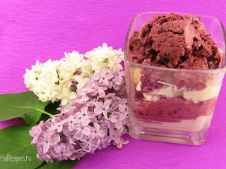 Домашнее мороженое: пломбир плюс сорбе из смородины